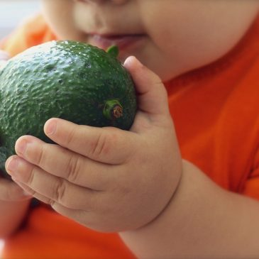 Alimentación complementaria – parte 4
